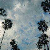 GABO MIX RAIN