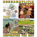 Reggaemylitis, Vibes FM - Inspiration for 2017