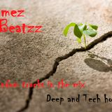 Wammez Beatzz Random october 2015 Mix