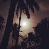 M@kossa: Live at Kuanidup Island Panama