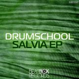 drumschool - Magic Mint - (Original Mix)
