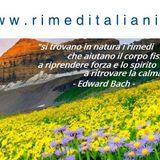 5° I RIMEDI ITALIANI V/S