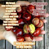 Springfield Road Audio Book Sample: Chapter 22 / BONFIRE TREACLE