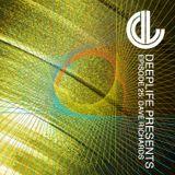 Deeplife Presents Episode 025 - 5.5.2016 - Guest Mix Dave Richards