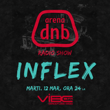 Arena dnb radio show - Vibe fm - mixed by INFLEX - 12-mar-2013