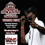 Throwback Fanatic - 2007 NY Rock The Bells Show Tribute Mix #2