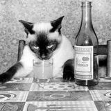 Dj Palto – Drunkard Mix