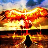 Be As The Phoenix