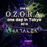 HATAKEN - Live at OZORA one day in Tokyo 2018