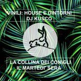 La Collina dei conigli - Vinili: house e dintorni - Kusco Dj 28/06/16