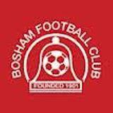 Bosham v Upper Beeding 15th April 2014