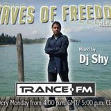Dj Shy Presents Waves of Freedom 133@Trance.FM (YearMix Showcase)