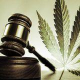 A Call To Global Legalization [Dub, Psydub, Techno Dub, Reggae Music Mix]