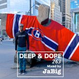 Trippy Deep House Music Mix by JaBig - DEEP & DOPE 263