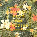 Topics From The Tropics