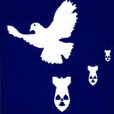 ArtiShock drei weiße Taubenmix - Tanzdemo @ Offenbach City 2013-01-05