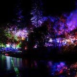 Shiny Objects Sunset Campout 2013 DJ Mix