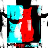 #170 ~ Raving Principles