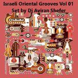 Israeli Oriental Groove Vol 1