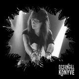 DJ Ren at Dzsungel Konyve 2017.03.21.