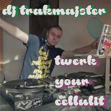 DJ Trakmajster - Twerk Your Cellulit MiniMix