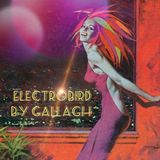 ElectroBird Mon Best Of By Gallagh'