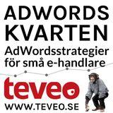 Adwordsstrategier för små e-handlare