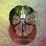 TO+VIEIRA - Audible Emotions