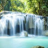 Brazilian Experience- January 13th, 2019: A Waterfall of Sound