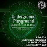 2019.02.16sat_Underground Playground at 蜂