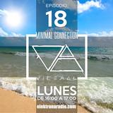 MINIMAL CONNECTION by VICERAL EPISODIO 018 - elektronados.airtime.pro