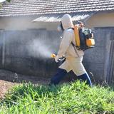 Secretária confirma 101 casos de dengue em Araras; há risco de epidemia.