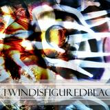 TEXTBEAK 1 : Pt 1 TWINDISFIGUREDBLACKHOLEZ