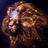 DJ ARI CARLINI (TRIBAL WARRIOR) LION HEART MIX