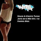 House & Electro Tunes June 2012 Mix Vol.1