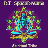 Spiritual Tribe - mixed by DJ SpaceDreams