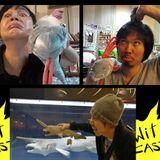 WiTcast 61.2 – การกลับมาของ WiT Quizzz!!!