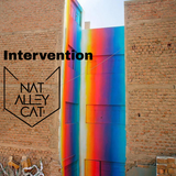 Nat Alley Cat - Intervention (Deep house/House/Tech house)
