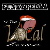 Funky Fella (aka Daddy Serious) - The Vocal Issue