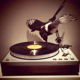 Birdy's 'Monday Menagerie' on www.jfsr.co.uk 6-8pm GMT