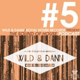 The Sound of House #5 podcast with Wild & Dann