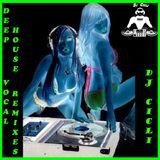 Deep House Vocal Remixes