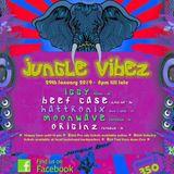 Hattronix @ Jungle Vibez Pai Thailand 29th Jan 2019