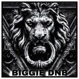 BIGGIE DNB 2019