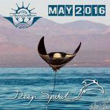 Deep Spirit May 2016