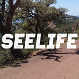 Seelife 002