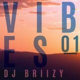 Briizy Dj  -  Vibes #01