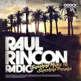 "Raul Rincon ""Sunshine Music for Sunshine People"" Cross-Section"