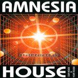 Amnesia House 1994 December - TOP BUZZ A