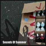 NALLSTRADAMUS - SOUNDS OF SUMMER